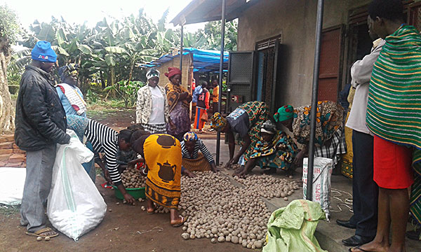 Ministry With the Poor fund monies provide seeds for potatoes, onions and carrots for women to plant and grow. The hope is that by selling the produce many women will be able to begin their own businesses.