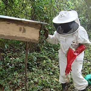 Beekeeping in Uganda with Sister Rose Kyomukama_5